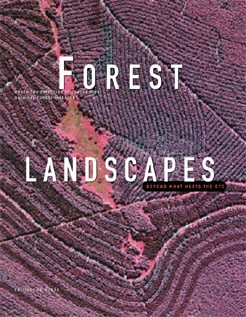 Forests landscapes, beyond what meets the eye  (English)